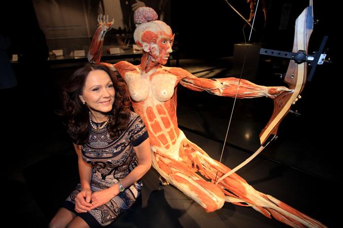 Body Worlds Anatomy And Art Teach Magazine