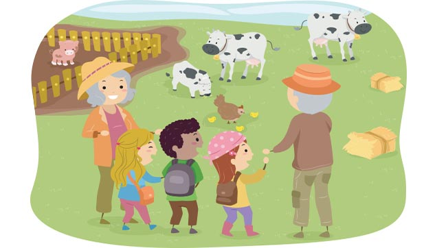 Fall Farm Trips