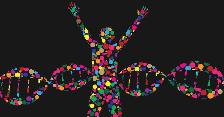 Growing a Gender-Inclusive Biology Curriculum